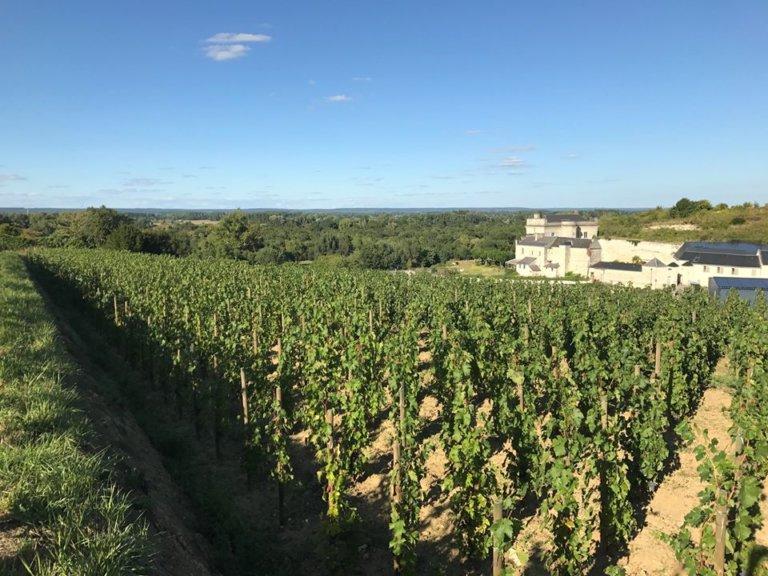 Château de Parnay