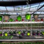 Gaultier Horticulture
