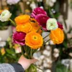 Chaumière Fleurie