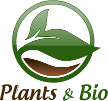 Plants & Bio